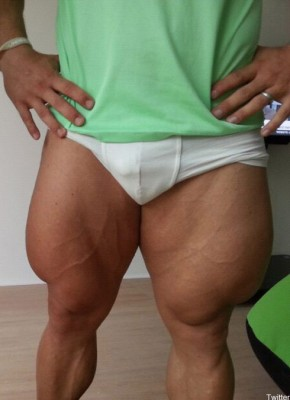 Robert-Fortsermann-quads-close-up.jpg