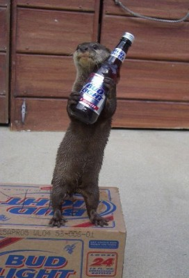 otter_with_beer.jpg