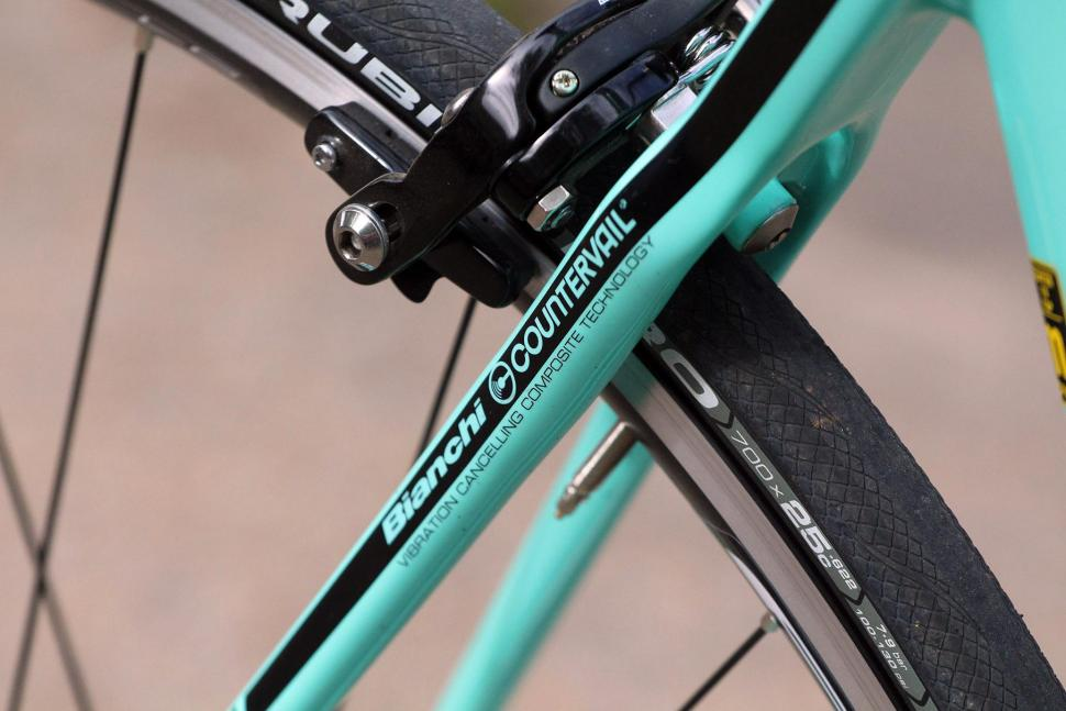 Bianchi Oltre XR3 - seat stay detail.jpg