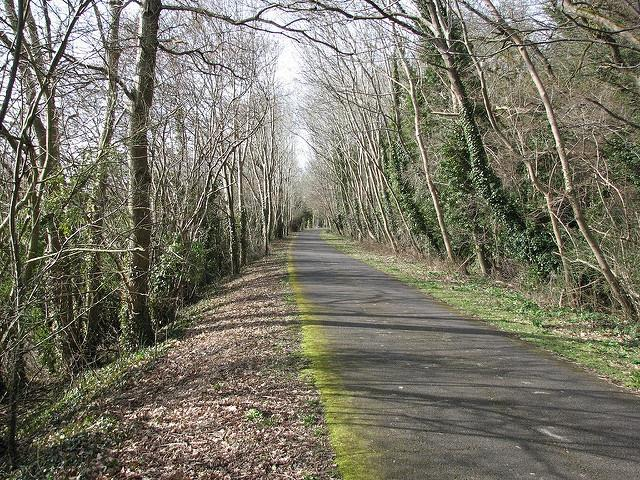 Calls for safety measures on Bristol and Bath Railway Path ...