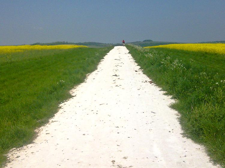South Downs Way - more conducive to friendly greetings?