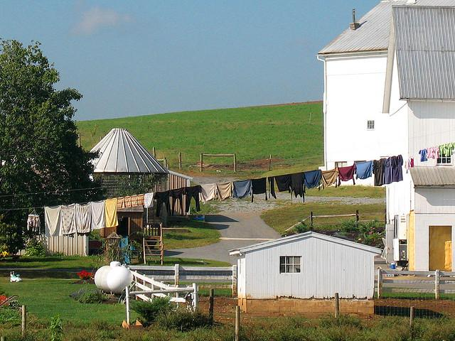 Amish Frustrating Drivers In Kentucky As New Ruling Allows
