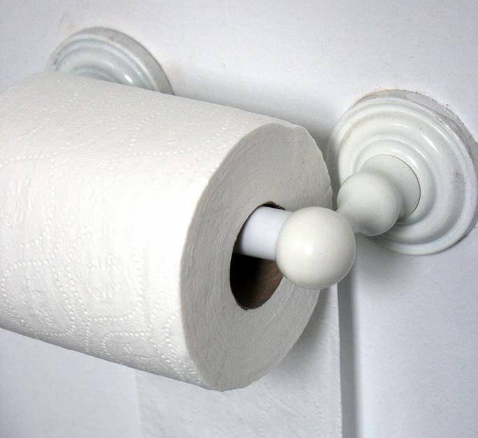 Toilet roll (CC licensed by Quinn Dombrowski via Flickr).jpg