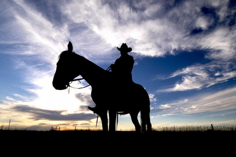 Cowboy (licensed CC BY 2.0 by Roderick Elme, Tourism South Dakota).jpg