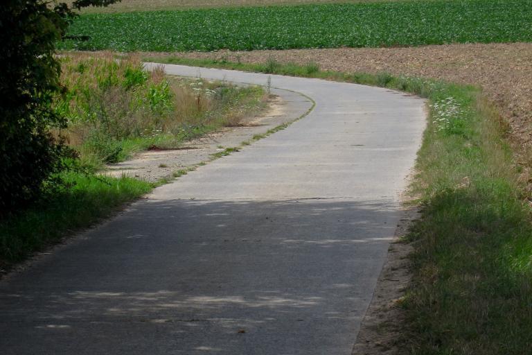 FlandersSummer - Bend.jpg