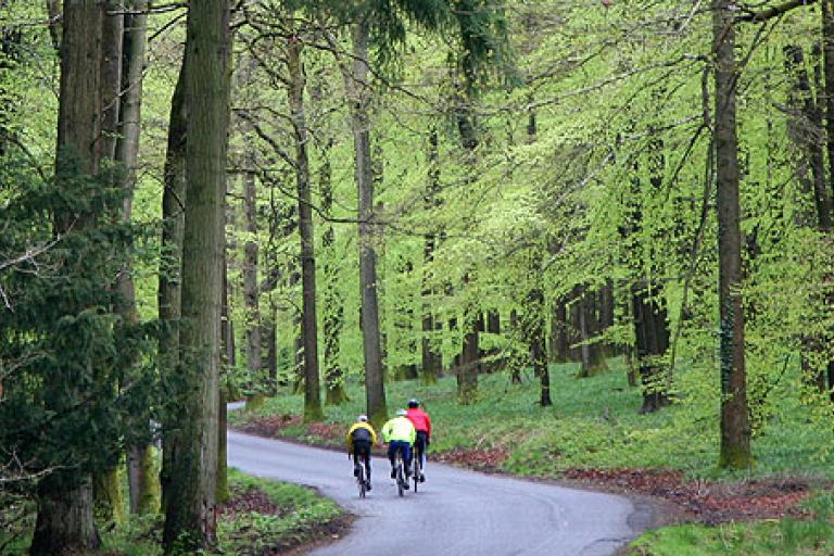Forest of Dean (image via Wheels in Wheels website).png