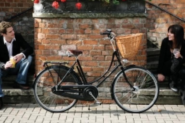 Pashley Princess Sovereign.jpeg