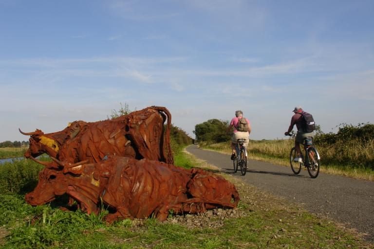 Water Rail Way (David Martin/Sustrans)