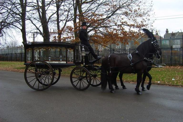 Horse-drawn hearse (picture via National Funeral for the Unknown Victim of Traffic Violence page on Facebook)