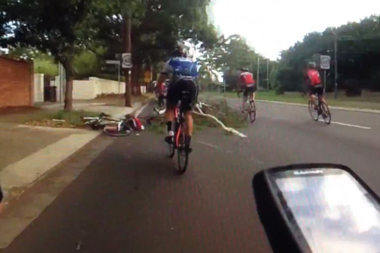 Tree attacks Australian cyclists.png