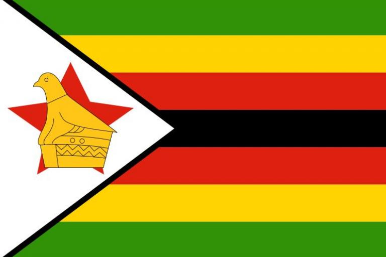 Zimbabwe flag 3x2