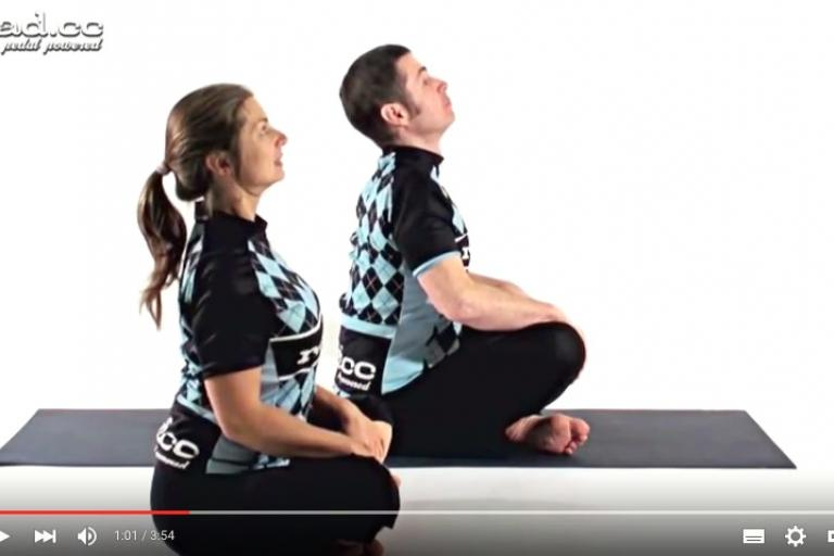 Yoga part 22 - scapula.jpg